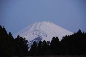 2009_03210003